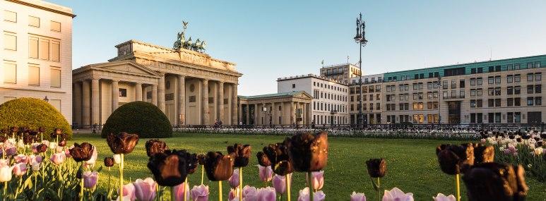 Das Brandenburger Tor in Berlin im Frühling mit Tulpen im Vordergrund. - BAHNHIT.DE, © getty, Foto: Marcello Zerletti
